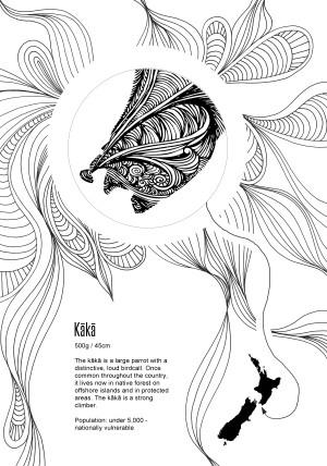 NZ Native Birds colouring book -